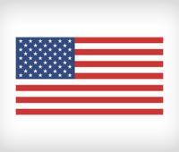 Broj američke vize